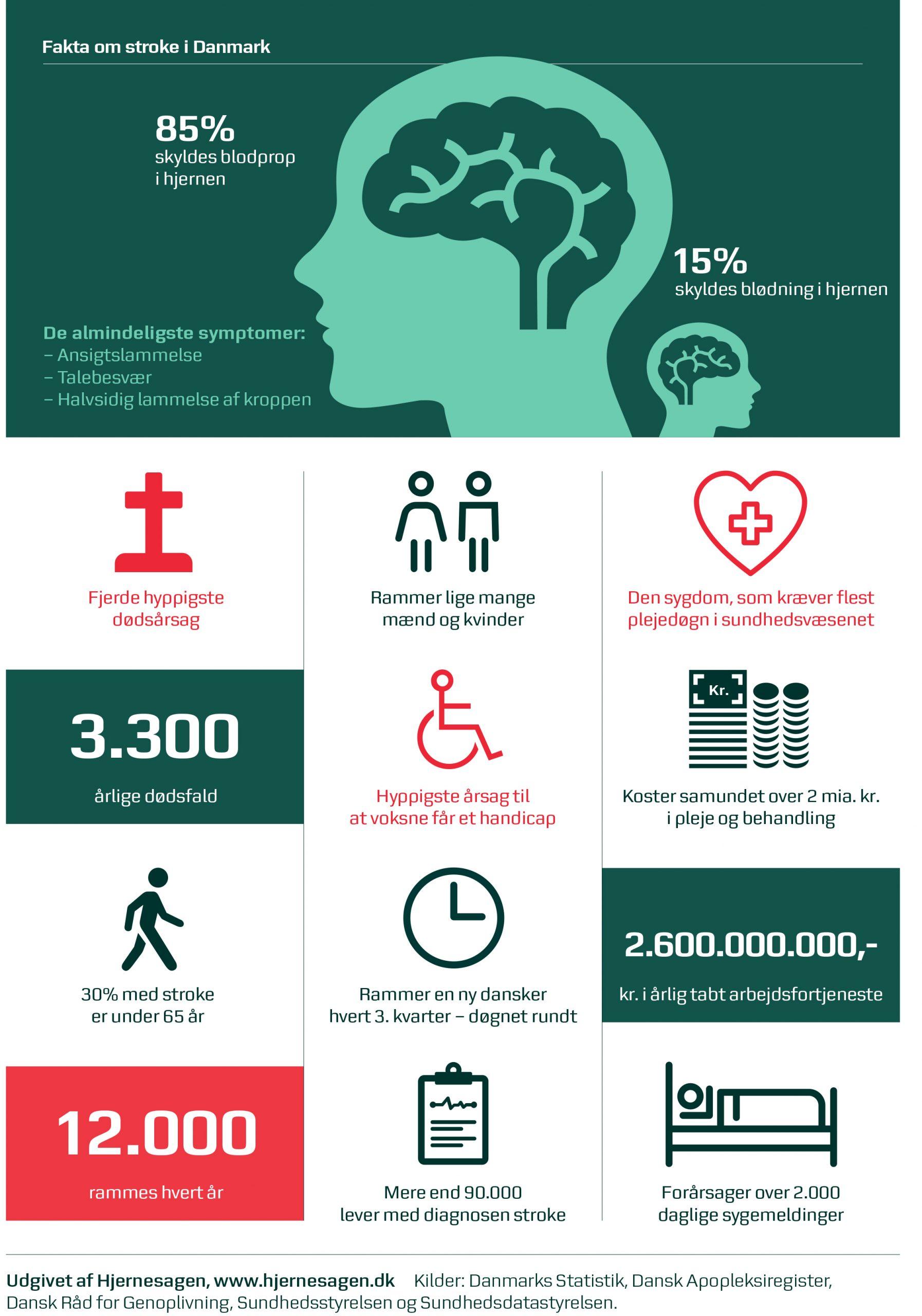 faktaark om stroke. 4. hyppigste dødsårsag. hyppigste årsag til at voksne får et handicap. 12.000 rammes af stroke hvert år.