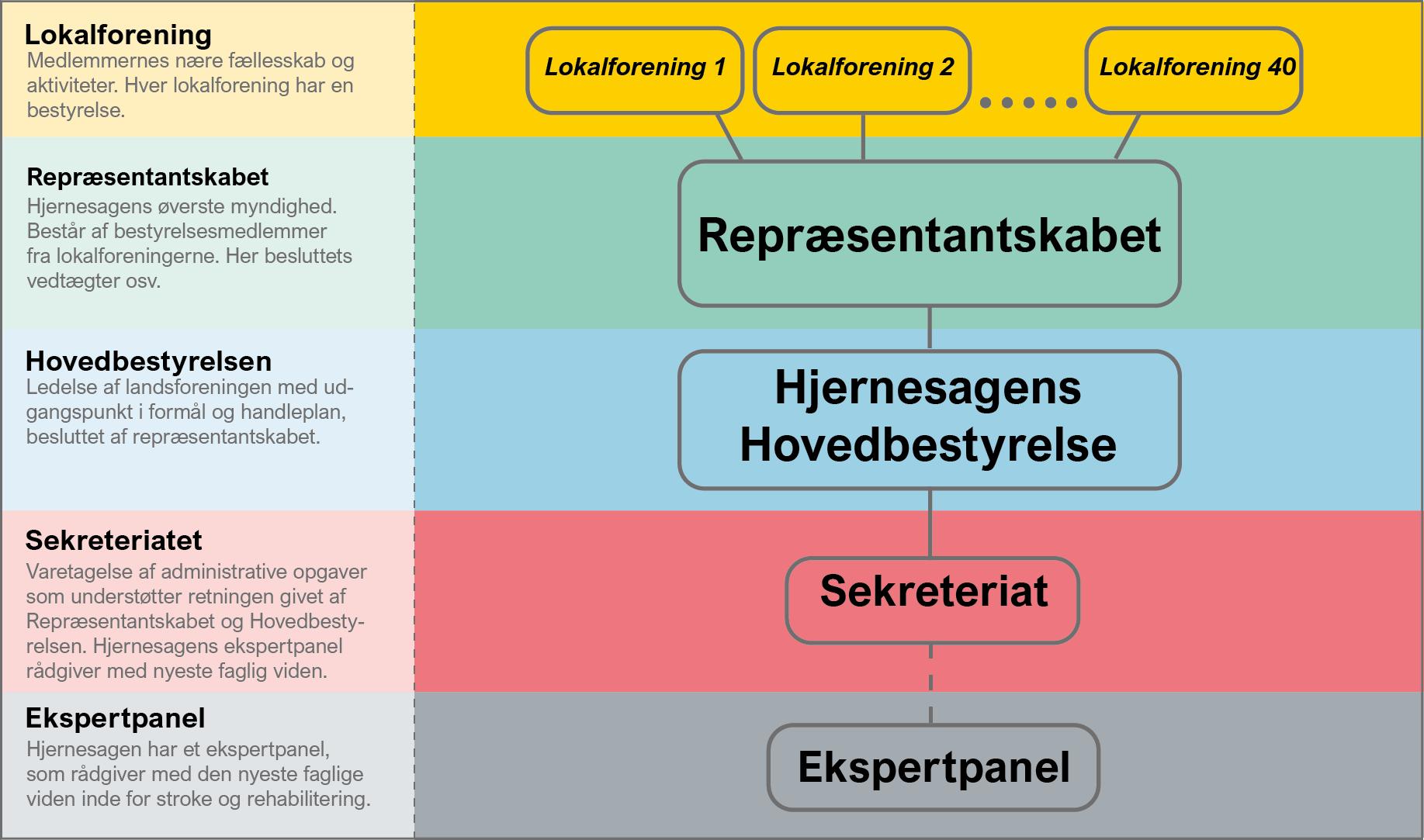 Hjernesagens organisationsdiagram