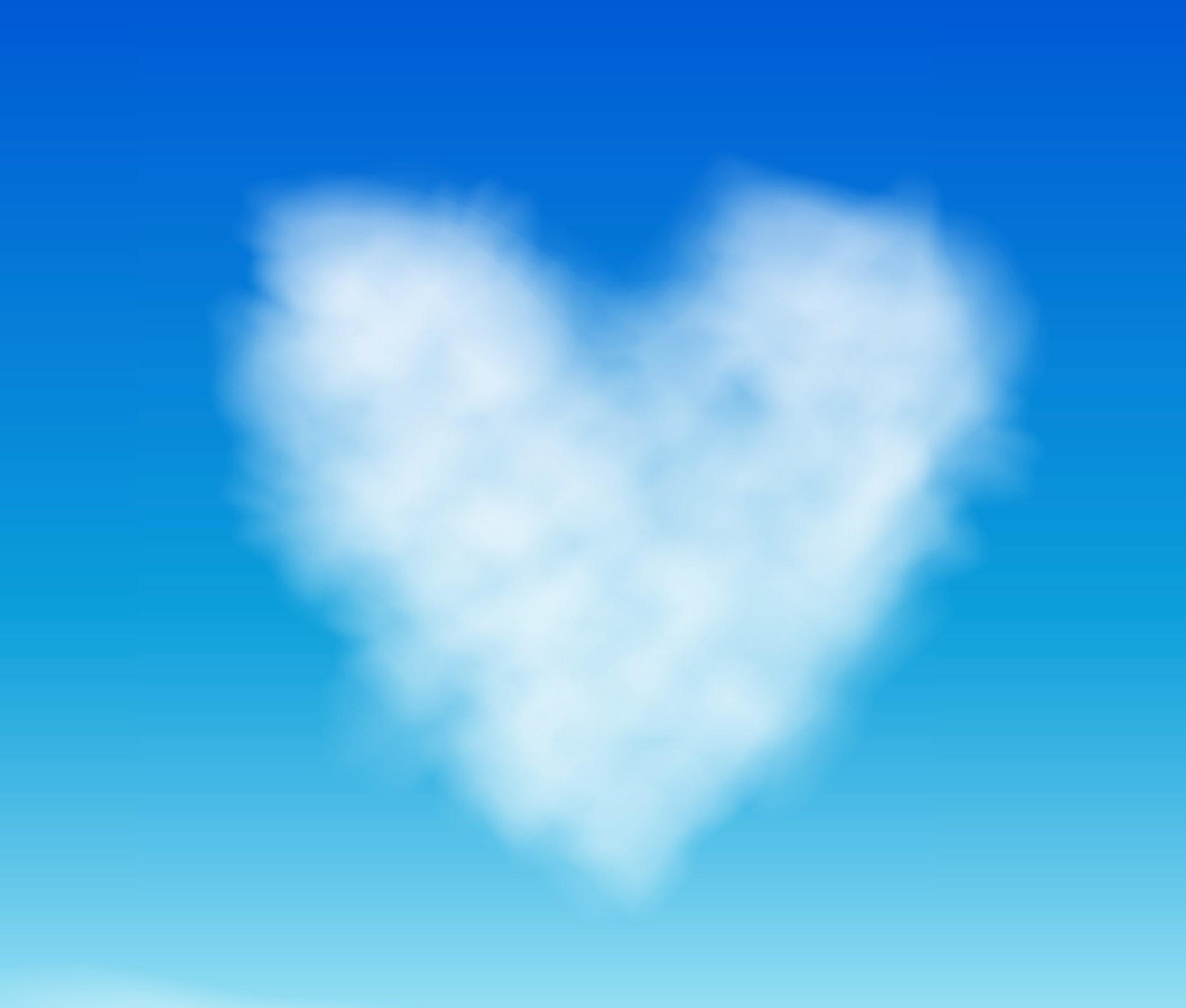 Hjertesky donation støtte
